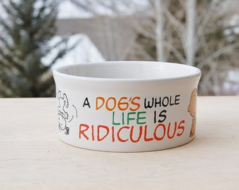 Charlie Brown Snoopy Pet Dog Dish  Peanuts Large Dogs Life is Ridiculous