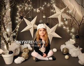Baby, Toddler, Child, Winter Tree Star Photography Digital Backdrop Prop for Photographers