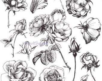 Temporary Tattoo - 13 Roses / Set of 11 Apples