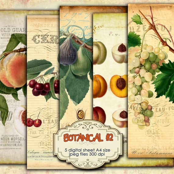 Botanical 2 digital collage sheets images old book for Jewelry books free download