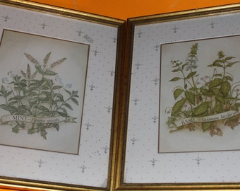 Herbal Print Kitchen Decor - Basil and Thyme