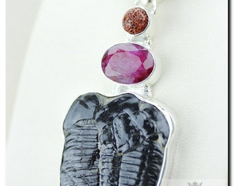 Large ELRATHIA KINGII TRILOBITE Ruby Coral 925 Solid Sterling Silver Pendant + Free Worldwide Shipping P1931