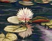 Bass Lake Lillies, water lillies, Boone, North Carolina, 9 x 12, original art, pastel painting