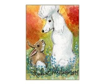 White Poodle  llmartin Original ACEO Yard Rabbit Watercolor 5