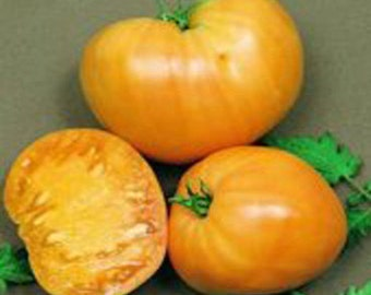 Orange Oxheart Tomato seeds