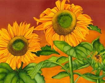 Watercolor painting...SUN DRENCHED...sunflowers...giclee