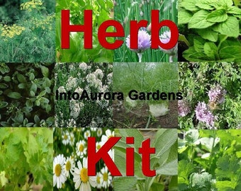 Herb seed kit lot of herbs Basil, chives, sage, parsley, dill and more seeds