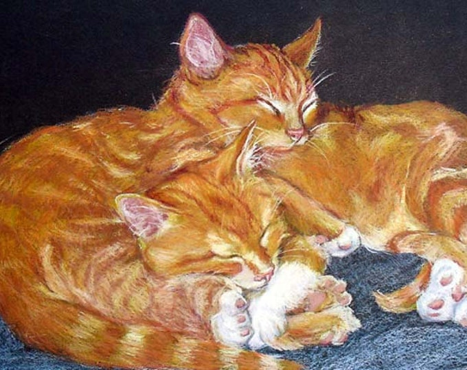 Custom Pet Portrait Drawing, Cats in Colored Pencil