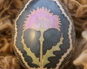 Thistle and Lace  Pysanky Duck egg Made to order