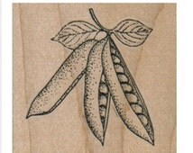 Rubber stamp  Peas in a pod gardening plant vegetable   stamping  scrapbooking supplies 12976