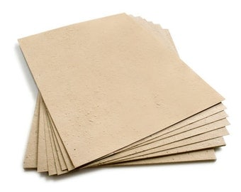 """10 Latte Sheets of Wildflower Plantable Seed Paper - 8.5 x 11"""""""