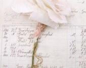 2nd Second Wedding Anniversary Long Stem Rose Cotton Gift Flower