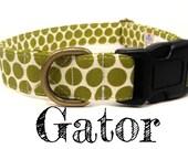 "Olive Green Polka Dot Dog Collar - Organic Cotton - Antique Brass Hardware - ""The Gator"""