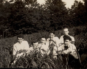 vintage photo Group of Men Sitting in Tall GRass 1920