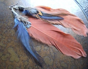 Dark Hues Wire Wrapped Feather earrings