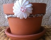 Terra Cotta Planter with shell flower, shell , embellished planter, plant pot
