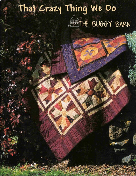 Buggy Barn That Crazy Thing We Do Pattern Book Quilt County