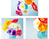 Flower photography - Set of 3 poppy photos - poppies, turquoise, yellow, purple, white, blue, bright and cheerful, summer decor, flower art