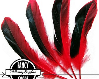 4 - Two-Tone - Duck Feathers - Iridescent Black and Red