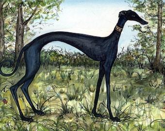 A Little Pretentious - Greyhound Art Dog Print
