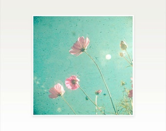 Pink Cosmos Flower Photography, Nature Art, Turquoise Decor, Bedroom Art, Summer, Floral - Meadow