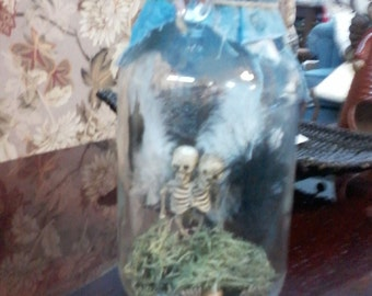 Two headed siamese twin baby fairies skeleton in a jar