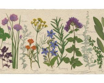 Long Herb, Fine Art Print