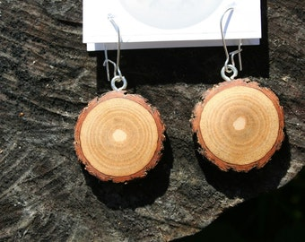 Medium Sized Sassafras wooden Earrings (sass2)
