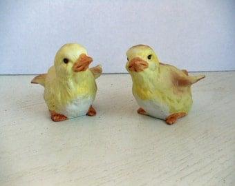 2 Cute Chicks