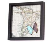 Framed Map Butterfly Blue Morpho South America