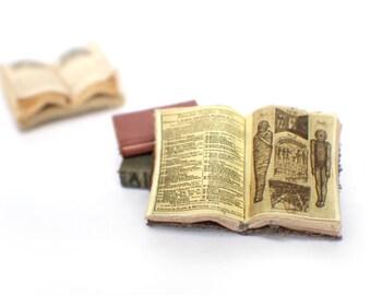 Miniature Open Book --- Mummies