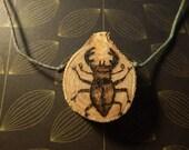 Stag Beetle Wood Slice Pendant