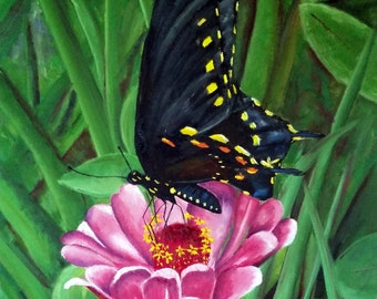 Black Butterfly on Pink Flower - Original Oil Painting on 16x20 Wrapped Canvas