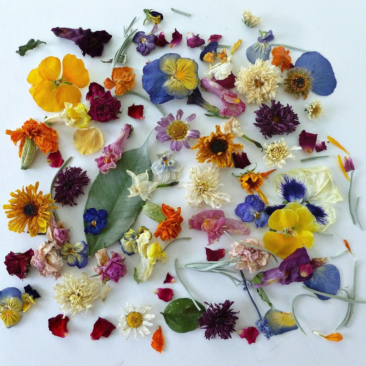 Flower Petals Wedding Confetti Dried Flowers By LarkspurHill