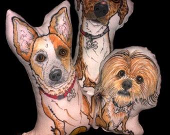 Custom Pet Portrait-Caricature Pillows