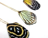Butterfly Wing Pendant -- Painted Wing Pendant -- Butterfly Necklace -- Gift Box included