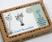 Minoan Inspired Lily Cluster - Boxed Greece Inspired Olive Wood Stamp and Ink Pad
