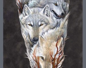 Arctic Wolf Pack Feather Print