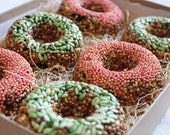 READY TO SHIP- Twitter Friend Tweets- half dozen bird seed donuts- Holiday Colors