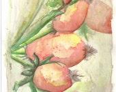 Crab Apples 6x9 inch original watercolor painting Art