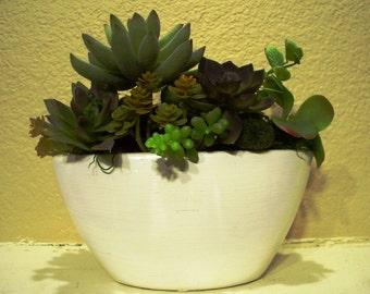 Desktop Planter Is a Succulent Garden of Permanent Botanicals