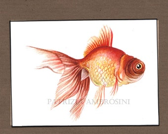 RED  fish  --  ACEO PRINT  -  open edition -  animal collectible card