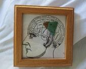 BIRD BRAIN sea glass bird with comical human brain anatomy anatomical bird on the brain silly saying