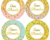 Baby Month Stickers, Monthly Girls Baby Bodysuit Stickers, Monthly Bodysuit Stickers, Milestone Stickers, Months 1-12 (The Madison)