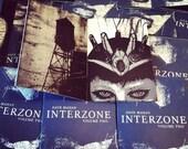 INTERZONE volume two (self published art zine)