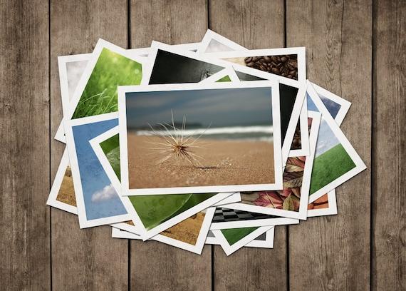 POSTCARDS Set of 4, Sea Creatures, Beach, Australia, Sydney, Shell, Starfish, Sand. Postcrossing postcards, australian postcards
