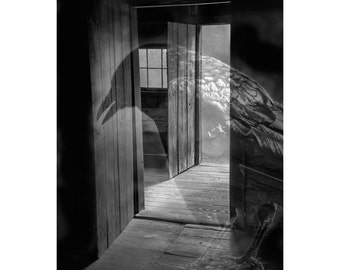 Ghost Spirit of a Gothic Crow inside a Room with Open Doors No.07BW A Black and White Fine Art Surreal Fantasy Photograph