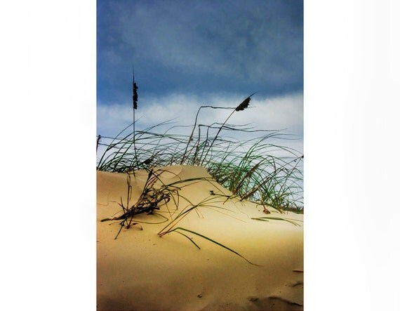 Dune and Beach Grass on Padre Island National Seashore in Texas on the Gulf of Mexico No.651 - A Fine Art Seascape Photograph