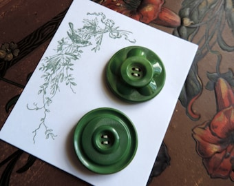 Celluloid Buttons Free Shipping Antique Green Button with Metal on Back Nice Large Size