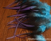 Turquoise Purple Feathers Craft Supplies Feather Laced Rooster Saddle Dip Dyed Plumes Multicolor Craft Feathers Purple Turquoise QTY12